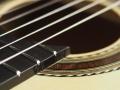 rosette klassinen kitara