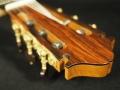 klassinen kitara lapa